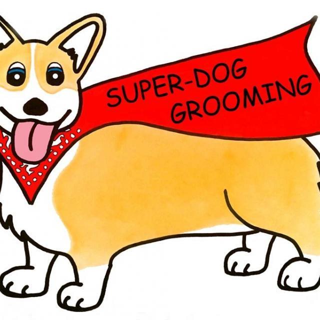 Dog Grooming Matawan Nj