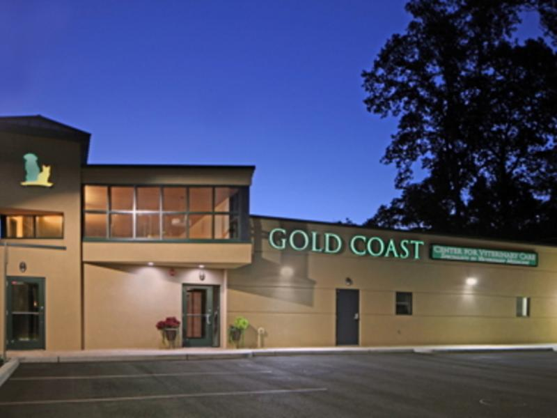 Superior Gold Coast Center For Veterinary Care Wins An Award For Best Veterinary  Hospital Design!